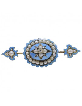 Spear and Shield Brooch